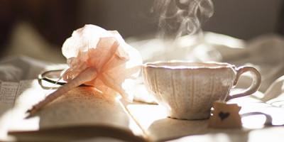 Цветок чашка книга