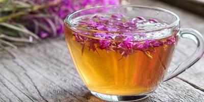 Иван чай кипрей