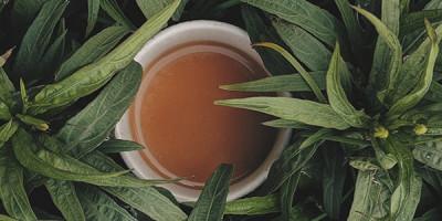 Кружка чая в траве