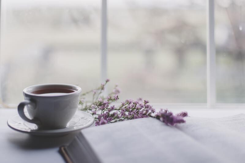 Чашка ветка тимьяна книга