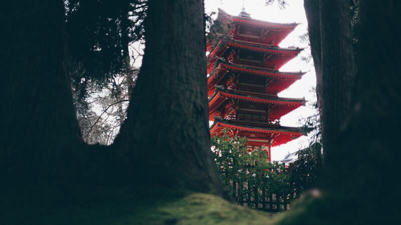 Китайская пагода в лесу
