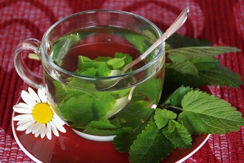 Стеклянный бокал цветок мелисса