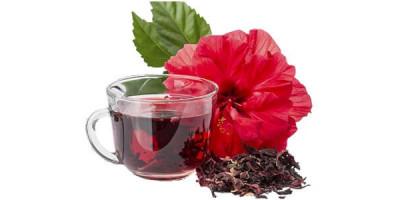 Чай каркаде цветок гибискуса