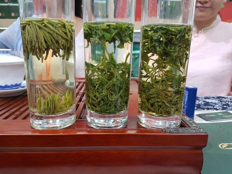 Три стакана с водой и листьями