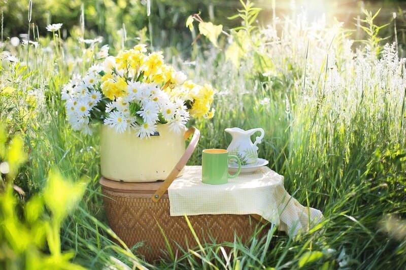 поляна цветы кружка кувшин