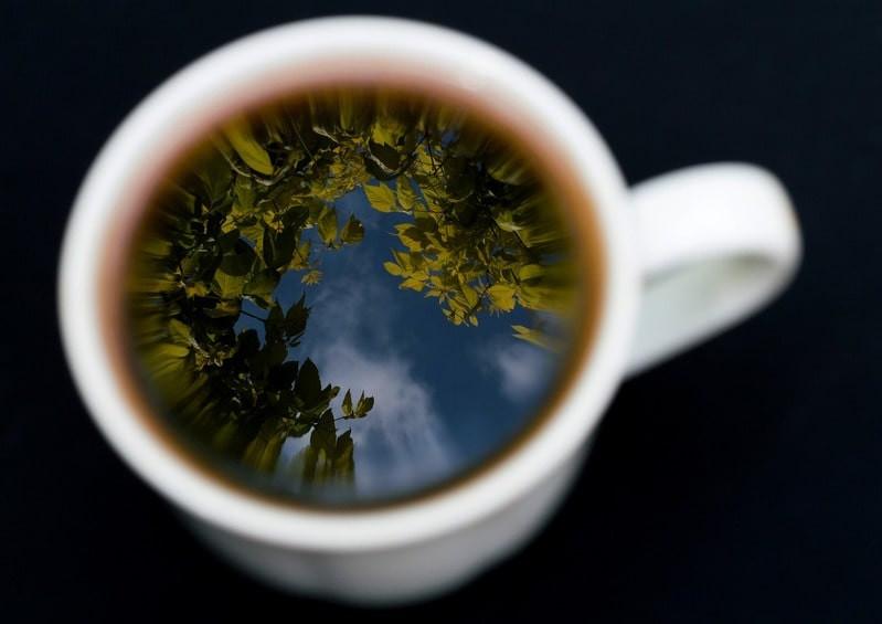 Кружка отражение листвы