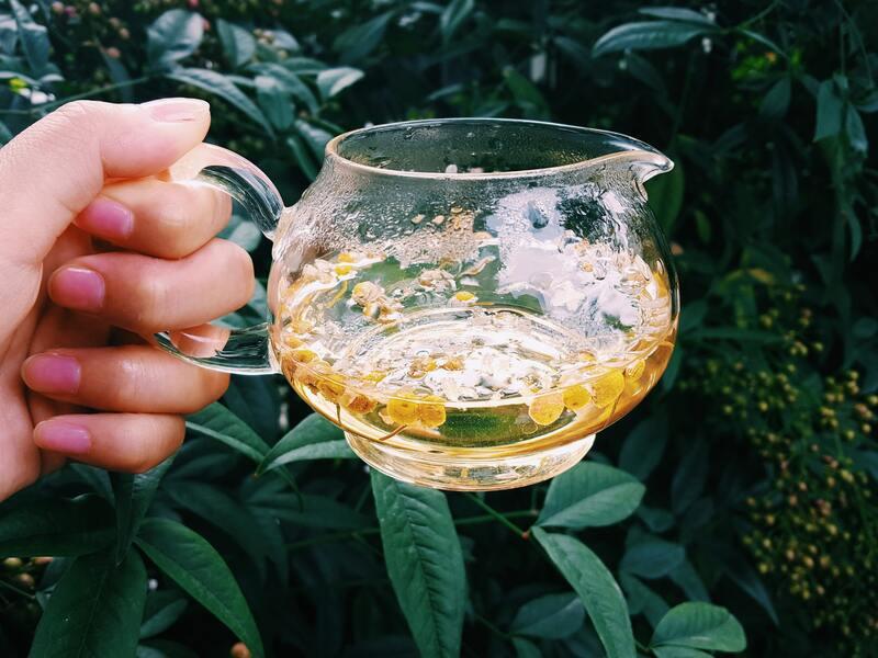 Кувшин с ромашковым чаем в руке