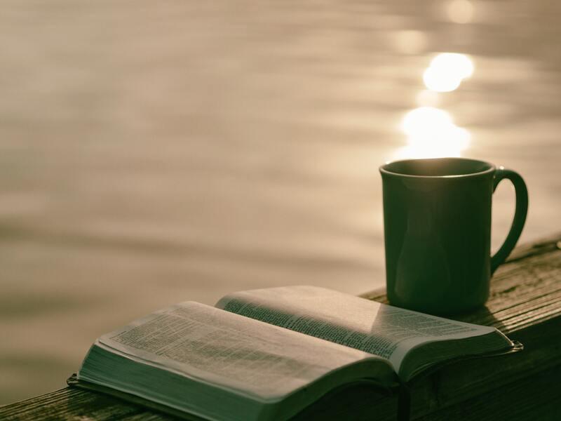 Книга кружка озеро